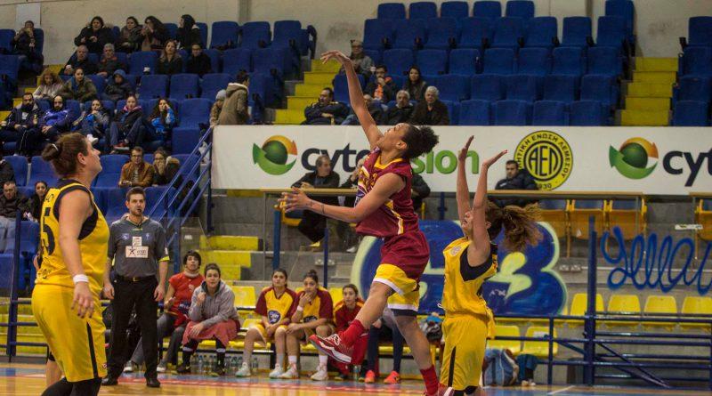 ael-women-basket (3)